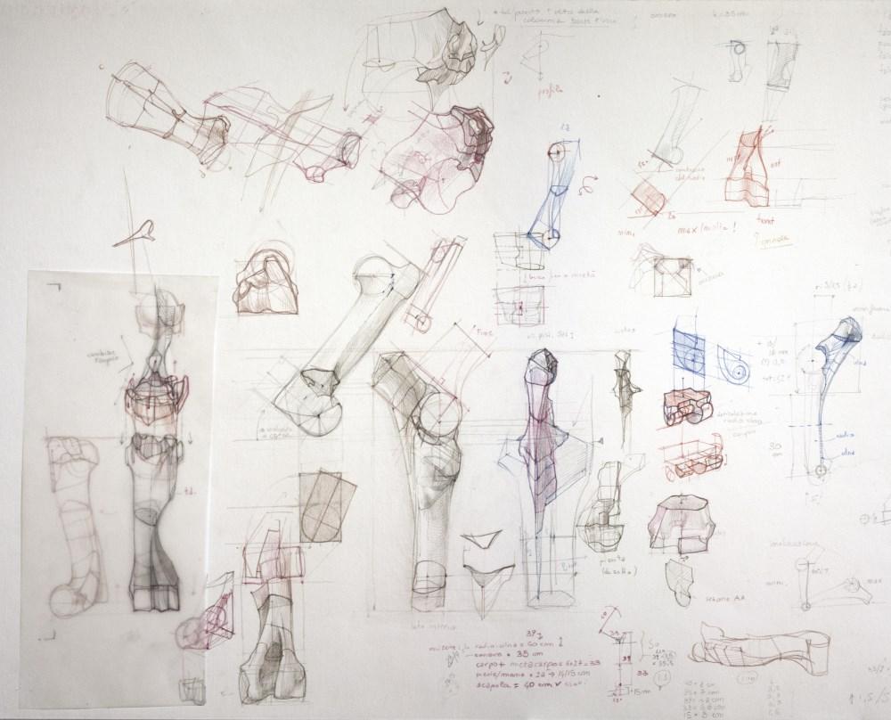 Disegno di Giada Tonello